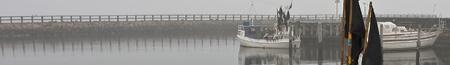 fog_banner