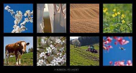 Forårsdag på landet.
