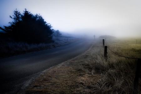 Den stille vandrer
