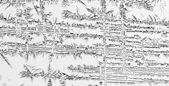 Naturens mønstre