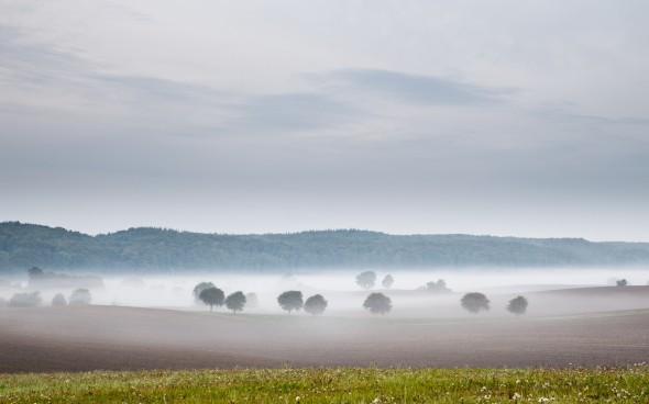 tåge i sondrop II