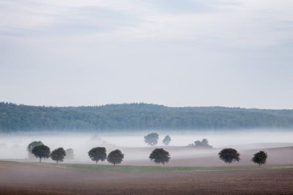 tåge i sondrup